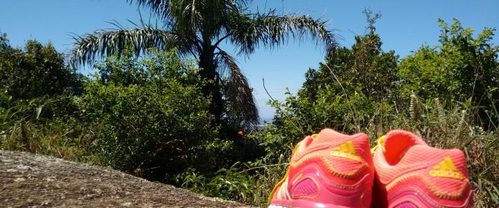 Dica de trilhas em Floripa